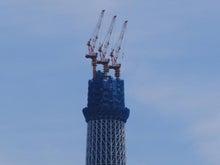 東京で一番美しくスカイツリーが見える寿司屋・屋形船『駒形』ブログ-st841