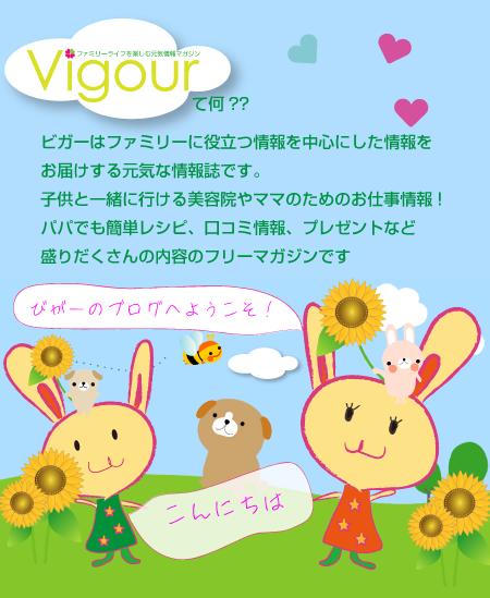 vigourのブログ