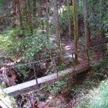 次の日 阪奈線 北…