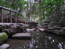 かっちゃんの日記-清正井戸