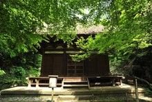 かっちゃんの日記-三渓園