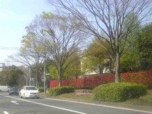 「森のkoe」-Image1081.jpg