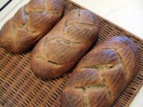 食べて飲んで観て読んだコト-ライ麦パン