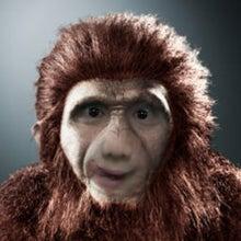 $へなちょこ日記-猿猿