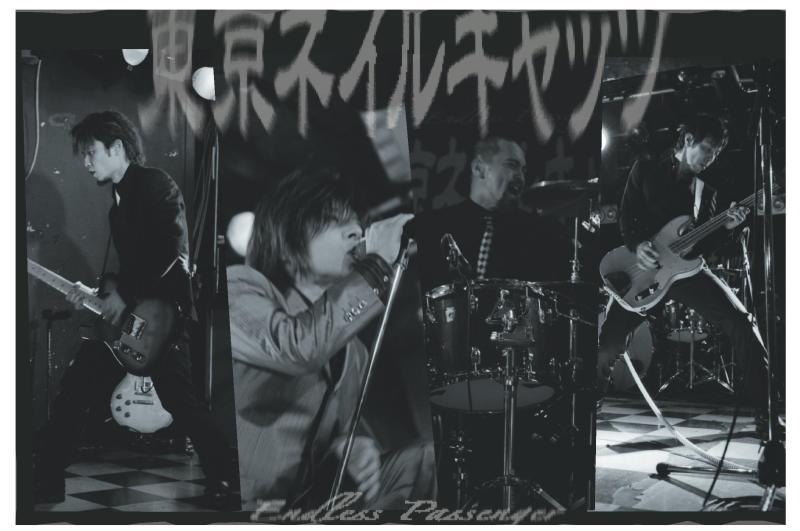 爪猫《裏》日記-東京ネイルキャッツPRF