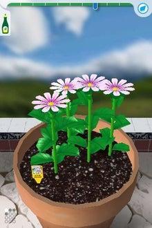 シープドッグのブログ-20 iPhone アプリ FlowerGarden フラワーガーデン