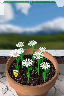 シープドッグのブログ-15 iPhone アプリ FlowerGarden フラワーガーデン
