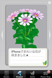 シープドッグのブログ-23 iPhone アプリ FlowerGarden フラワーガーデン