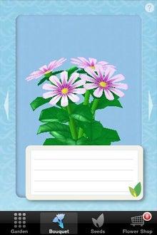 シープドッグのブログ-21 iPhone アプリ FlowerGarden フラワーガーデン