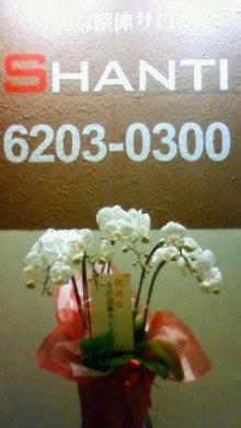 """$「未病」「体質改善」「不定愁訴」に 東洋三大療法""""推拿(すいな)整体""""-shanti pic flower"""
