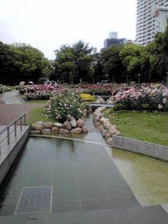$kamkambiwakokoの風が吹いたらまた会いましょう-20100523132347.jpg