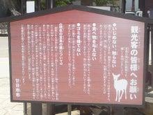 「試される大地北海道」を応援するBlog-鹿