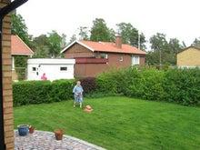 北欧からコンニチワ-芝刈り