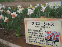 ~akkyの春夏秋冬~