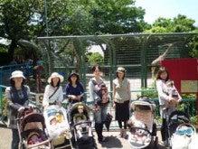 ベビーマッサージ&ふれあい遊び教室 Baby-mama club  あれこれブログ-動物園遠足