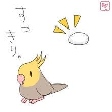 卵すっきり