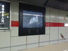 街中広告 丸の内線@東京駅 デジタルサイネージ