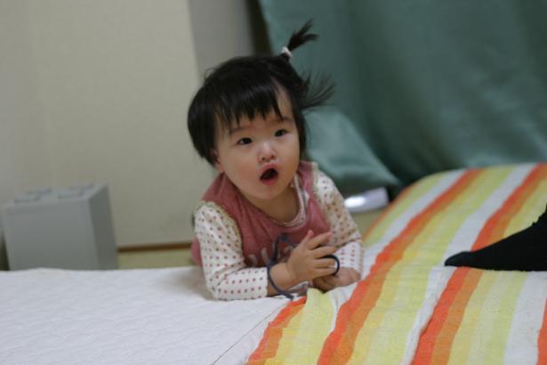 Grumpy Monkey(不機嫌なおさるさん)の観察日記-20051101dengurigaeshi10