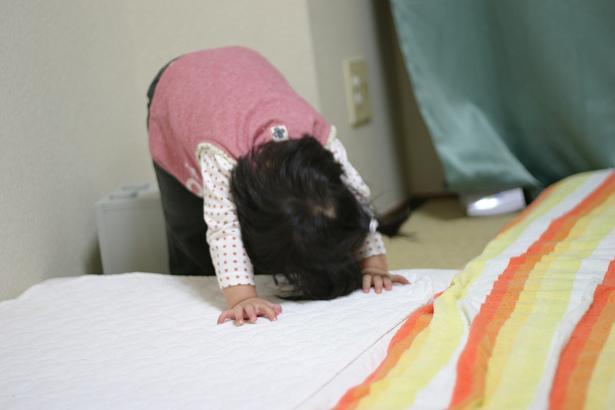 Grumpy Monkey(不機嫌なおさるさん)の観察日記-20051101dengurigaeshi8