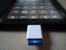 ナチュラリストのブログ                                     ネイチャーフィールド-Apple iPad Camera Connection Kit