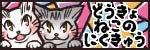 奥様はねこ ~団地妻猫とダーリン絵日記~-同居猫の肉球