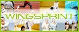 WINGSPRINT ホームページ