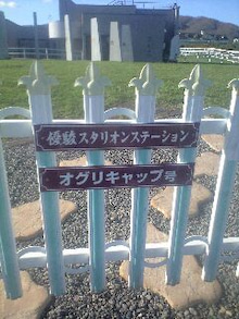 小春にっき-100509_1626~0001.jpg