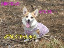 ☆気まぐれビスコDIARY★