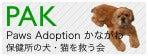 $One's  Partner ~ withさくら&あゆむ~