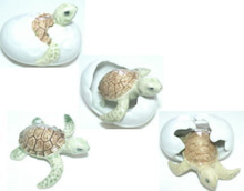 ノアハート 海亀卵セット