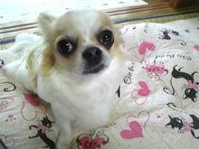 RENOA~レノア~-100608_152414_ed.jpg
