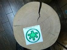 横浜・鶴見で究極のエコ住宅を手に入れる方法教えます!無垢材の注文住宅一筋60年協和木材産業のブログ-乾燥による干割れ①
