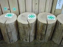 横浜・鶴見で究極のエコ住宅を手に入れる方法教えます!無垢材の注文住宅一筋60年協和木材産業のブログ-乾燥による干割れ③