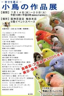 ようこそ!とりみカフェ!!~鳥の写真や鳥カフェでの出来事~-幸せを呼ぶ小鳥の作品展