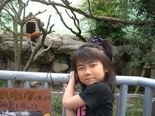$★ ENAのえいっ!YAYOのえ~ん! ★-レッサーパンダ