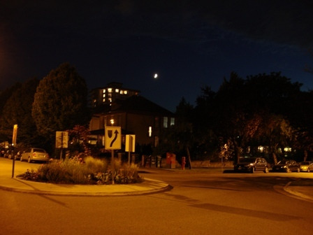 dahliaのブログ-Jun 16'10 ⑫ カナダリア