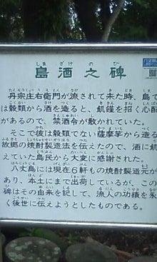 タンタンの冒険-100615_1043~01.jpg