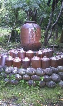 タンタンの冒険-100615_1042~01.jpg