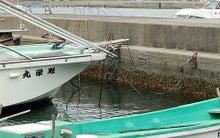 小豆島日記-王子漁港