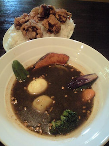スープカレーとコンサドーレの週末 | 札幌011-マグマ