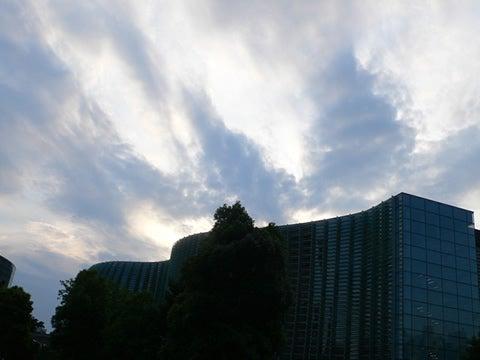 口中の幸い <男子厨房酒の愉しみ>-六本木・新国立美術館