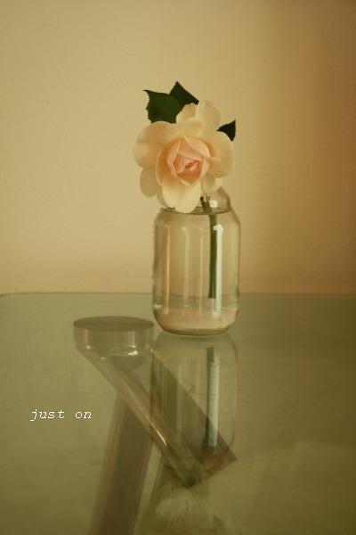 just on-今期最後のバラ2
