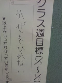 格闘親子と、のほほん母-100617_1706~01.jpg