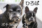 BOLT  ★お~MY SOUL★