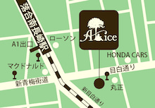 $ALICE wondersalon-map.jpg