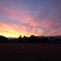 Daybreak--…