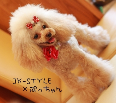 JK-STYLE ★ SHOPBLOG