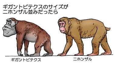 川崎悟司 オフィシャルブログ 古世界の住人 Powered by Ameba-もしもギガントピテクスがニホンザルサイズだったら
