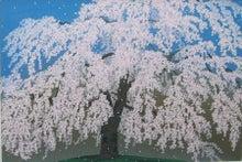 フランス絵画のアトリエドパリのブログ-小石川後楽園の枝垂れ櫻/中島千波