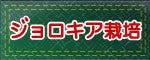 おいしい激辛.com ~激辛ハバネロ・ブート・ジョロキアの栽培日記~ブート・ジョロキア栽培